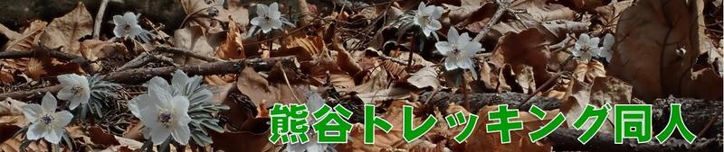 2020/3/7 武甲山 節分草